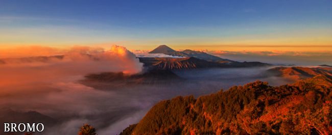 Bromo Destination - Ijen Trails