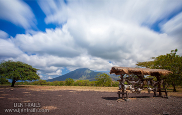 Baluran Packages Fullday Tour